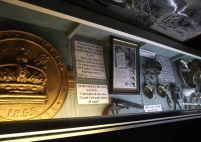 Museum Display Case
