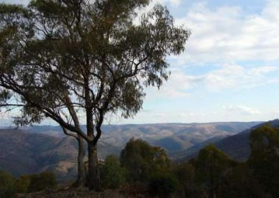 Hawkins Hill View