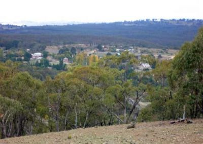 View from Bald Hill