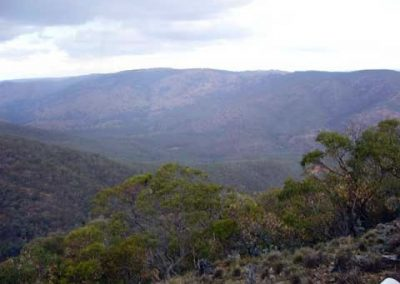 View from Merlin Lookout
